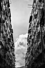 DSCF1993 Symmetry (Scofield Chan) Tags: street blackandwhite monochrome hongkong alley snapshot hong kong fujifilm streetphoto fujinon hongkongculture streetsnap xt1 fujinon35mm