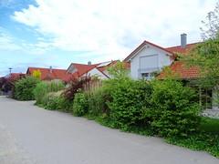 DSC04047 (Mr.J.Martin) Tags: tusslingbavaria bayren germany gapp garden canal village church wildflowers