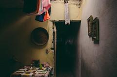 Liberacin  Los Sauces (Eliminar el Dengue Colombia) Tags: casa colombia mosquito bacteria virus barrio comunidad sauces dengue medelln antioquia salud bello prevencin familias aedes liberaciones aegypti desafocolombia