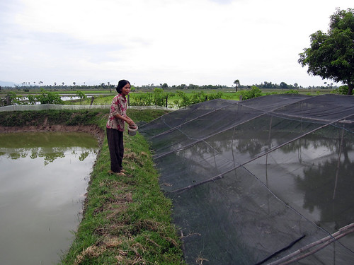 A farmer showing her nursing pond in Cambodia. Photo by Jharendu Pant, 2009.