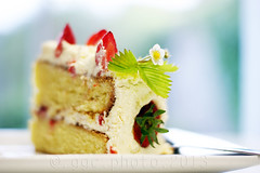 I ate my piece of cake... (Gregoria Gregoriou Crowe) Tags: birthday ireland food cake horizontal closeup photography text nopeople celebration birthdaycake tipperary foodanddrink indulgence freshness colourimage blurbackground