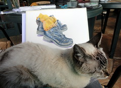 Joaquim loves a lap during the watercolor class (Dona Minúcia) Tags: cute art animal colo cat humor gato fofo gracinha soundly watercolorclass parkwaywatercolorgroup joaquimsleeping dormindotranquilamente