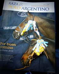 117th Hurlingham Club Open Championship, Argentina / 117 Abierto de Hurlingham YPF () Tags: travel vacation portrait horse holiday man argentina argentine leather magazine cheval buenosaires boots pony portraiture ba polo rtw pferd vacanze tack hest porteos roundtheworld paard triplecrown  polopony globetrotter raza polomatch  poloclub argentinien  hurlingham equidae onhorseback polofield zonea hurlinghamclub leatherboots worldtraveler  ariannin repblicaargentina laaguada  chukkas  argentinidad pologame poloteam ladolfina    zonaa chukkers abiertodehurlingham  triplecorona 117thhurlinghamopen hurlinghamopen  chukers tradiciondelpoloargentino razamagazine