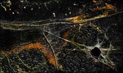 Shot In The Dark (Junkstock) Tags: arizona abstract black color texture glass closeup dark photography photo junk darkness photos decay explore textures photographs photograph weathered abstraction artifact distressed patina relic flickrexplore explored oldandbeautiful