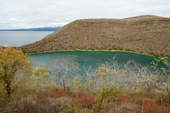 isabella2_galapagos_july2013 (YenC) Tags: travel southamerica ecuador galapagos isabella taguscove