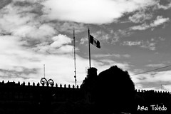 Mxico,Centro (Ara Toledo) Tags: street summer sky blackandwhite sun art beautiful mxico architecture clouds photography photo amazing day place flag culture palace backlighting sunnyday mexicanflag