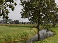 Oude Diepje bij Groot Wetsinge (Jeroen Hillenga) Tags: netherlands groningen hunze wetsinge grootwetsinge kleinwetsinge reitdiepdal oudediepje