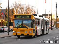 MAN Artic R351, Grote Street, Adelaide (baytram366) Tags: street city man bus public buses evening traffic state metro market authority transport central replacement peak rail railway down special hour transit adelaide government service artic sta shut bendy grote n3 noarlunga
