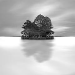 lago soustons... (ruben redondo...) Tags: arbol lago agua reflejo soustons