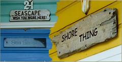 BEACH HUT SIGNS Lancing (John's taken it. recovering still a bit slow.) Tags: beach huts artworks shoreham lancing canon7d