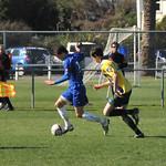 v Wairarapa United 6