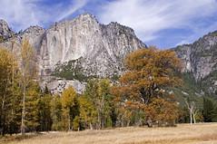 Autumn in Yosemite (wanderingnome) Tags: california november autumn usa fall unitedstates yosemite bridalveilfalls yosemitevalley 2013 pentaxk7 wanderingnomez