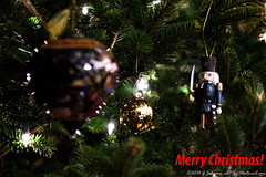 20131222_075_Christmas-Edit.jpg (cct77gjj) Tags: christmas newyork tree holidays saratoga events saratogasprings ornaments nutcracker merrychristmas dotenave