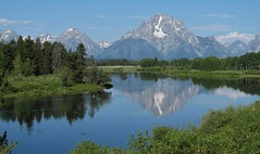 GTNP ~ Oxbow Bend (karma (Karen)) Tags: trees snow mountains topf25 birds reflections jackson explore pines rivers snakeriver wyoming tetons 4summer grandtetonnp americanwhitepelicans oxbowbend usparks canong10