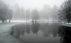 Winter Fog (bjorbrei) Tags: trees winter mist snow ice water oslo norway fog reflections river day akerselva pwwinter