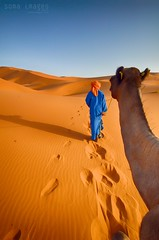 Walk this way (Soma Images) Tags: travel blue boy red orange jason man hot green sahara trek photography sand desert wind dunes dune young dry images arabic safari camel morocco berber arab maroc tribes nomad soma turban dust tribe camels nomads marokko moroccan arron tuareg arabs erg merzouga safaris bivouac chebbi saharan somaimages somaimagescom jasonarrongreen