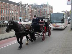 Paardenkoets Amsterdam Rokin (Arthur-A) Tags: horse netherlands amsterdam nederland paard horsecarriage koets paardenkoets
