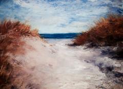 Ocracoke Grasses (dewartist) Tags: sand pastel dunes dune atlantic pastels softpastels