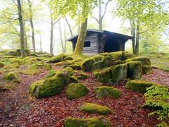 Vosges (denismartin) Tags: france green rain iceage forest spring geology lorraine printemps vosges forestimages denismartin fossard eloyes cuveaux