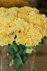 Carnations (WorldClick) Tags: pink light roses orange baby sun orchid flower green glass up rose canon table eos photo flickr photographer close perspective silk photograph buds rays gladiola arrangement gladiolus arrangements carnations phototgraphy phool 1100d canoneos1100d worldclick