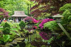 Japanse Tuin Clingendael 2014-02209 (Arie van Tilborg) Tags: japanesegarden denhaag thehague clingendael japansetuin clingendaelestate landgoedclingendael