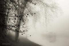 Misty morning (ElmerstarK) Tags: mist france fog canal péniche bourgogne brouillard brume saône côtedor auxonne