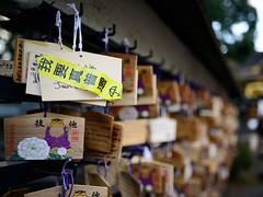 Pray for Rights (H.H. Mahal Alysheba) Tags: japan tokyo shrine politics snapshot nikkor afs 35mmf18 umbrellarevolution