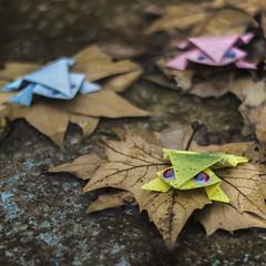 Paper frogs (8:52 - origami) (ponzoñosa) Tags: 50mm origami frog otoño rana papiroflexia autumnal 52weeks
