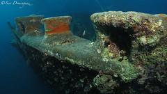 IMG_7744 Thistlegorm (Ins Domnguez) Tags: ocean sea underwater redsea diving wreck underwaterphoto canons110