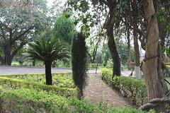 Taxila Museum (M Haider) Tags: pakistan museum buddhist relics taxila