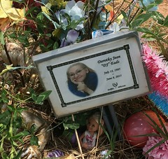 Eads Grave Marker (eloisedv) Tags: oklahoma cemetery gravemarker cartercounty lonegrove