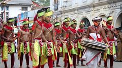 Perahera Dancers (IMG_3676b) (Dennis Candy) Tags: street boy green heritage yellow festival youth costume day culture buddhism dancer parade srilanka ceylon procession tradition serendipity pageant performer hinduism kandy clapper perahera slapstick serendib serendip esala