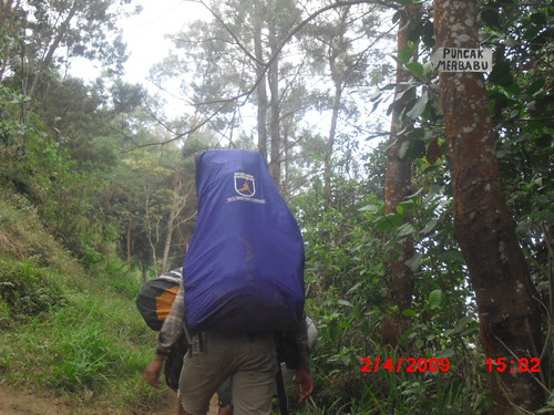 "Pengembaraan Sakuntala ank 26 Merbabu & Merapi 2014 • <a style=""font-size:0.8em;"" href=""http://www.flickr.com/photos/24767572@N00/26558761543/"" target=""_blank"">View on Flickr</a>"