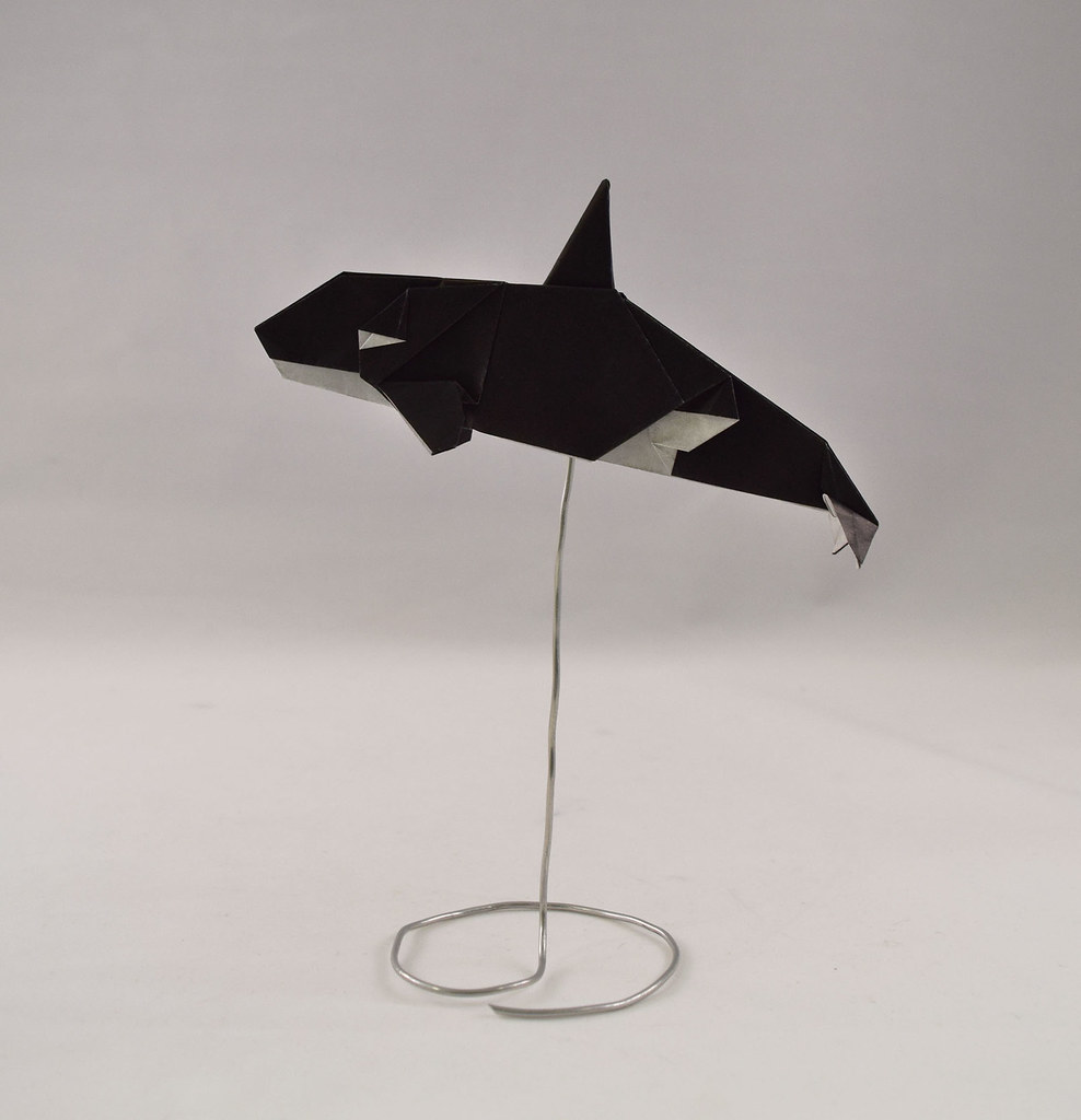 Orca Ponadr Tags Simple Whale Killer Origami Paper
