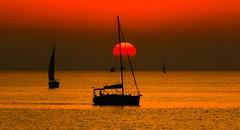 sailing in a golden sea - Tel-Aviv beach (Lior. L) Tags: travel sunset sea beach nature golden sailing silhouettes sailboats