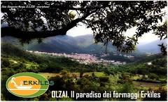 OLZAI: il paradiso dei formaggi Erkles (visitolzai) Tags: murgia formaggi barbagia pecorini olzai giangavino erkles