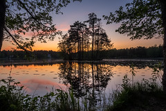 Colours of the Evening (Jens Haggren) Tags: olympus em1 evening colours light lake island trees water reflections sky landscape nacka sweden explore