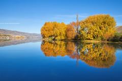 Stillness || LAKE DUNSTAN || CROMWELL (rhyspope) Tags: new autumn lake pope reflection tree fall nature water canon mirror zealand nz 5d rhys cromwell mkii dustan rhyspope