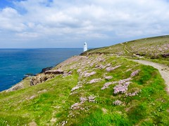 Trevose Lighthouse (heathernewman) Tags: uk pink flowers england lighthouse white building green walking cornwall hiking coastal trevose northcornwall southwestengland