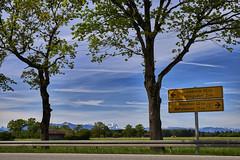 Zwischen Innsbruck und Mnchen (Helmut Reichelt) Tags: leica germany mnchen bayern deutschland bavaria mai grn innsbruck frhling zugspitze b11 leicam geretsried leicasummilux50mmf14asph knigsdorf colorefexpro4 typ240 captureone9