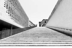 Up (petia.balabanova) Tags: street city travel light shadow blackandwhite abstract geometric up stairs monocromo path malta minimal traveling lavalletta 2470mm nikond800