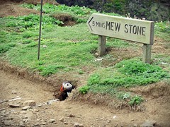 """"""" It's A Sign From Above !"""" (mr_snipsnap) Tags: sign wales island puffin signpost pembrokeshire seabird burrow skomer"""