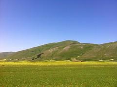 Piana di Castelluccio (alessiodl) Tags: panoramica norcia castelluccio