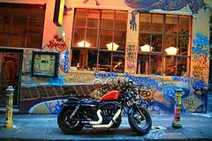 (Dhiren Adatia) Tags: street blackandwhite dog art monochrome animals bike graffiti streetphotography melbourne patient urbanart motorbike biker laneway mansbestfriend photogenic bikey animallovers melbournelaneways