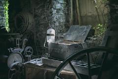 Case 22 (Kriegaffe 9) Tags: wood mill wheel dark bottle ivy machinery cogs gears