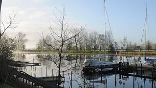 Nebliger Morgen an der Eider; Süderstapel, Stapelholm (32)