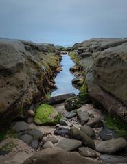 Low Tide (jwsmithphoto) Tags: california seascape pacific sandiego tide lajolla coastal