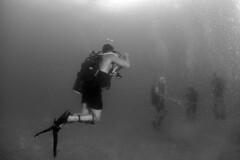 160608-N-ON977-253 (U.S. Pacific Fleet) Tags: underwater diving vietnam eod uxo humanitarian vn eodmu5 fleetcombatcamerapacific vietnampeoplesnavy ctf75 mc3alfredacoffield vietnamhma
