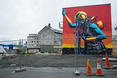 7 - Reykjavic (93) (Yksel85) Tags: streetart reykjavic islanda iceland horse iceberg geyser nikon rome church art cavallo vulcano murales viaggi travel turista fiordo fiordi ghiacciaio blonduoss cascate waterfall
