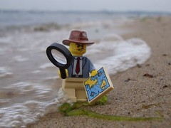 What have I gotten myself into? (captain_joe) Tags: beach water strand toy wasser lego minifig spielzeug minifigure 365toyproject acebrickman